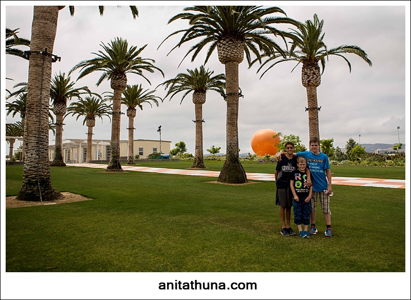 greatpark-_D0A4444