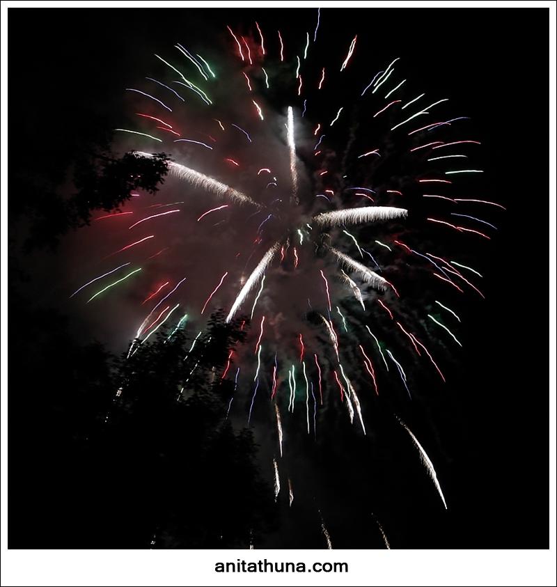 firework 2013-_D0A4792