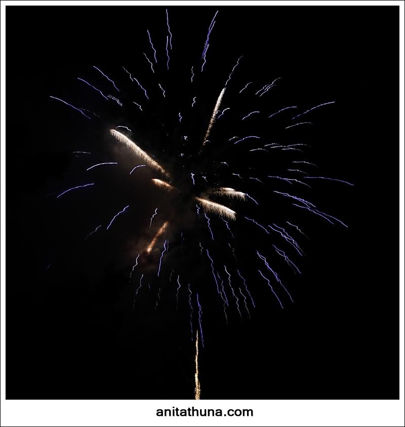 firework 2013-_D0A4795