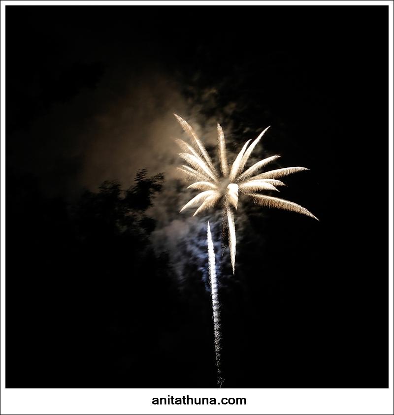 firework 2013-_D0A4796