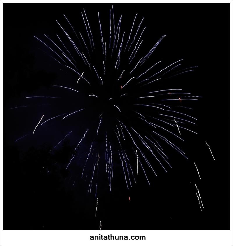 firework 2013-_D0A4800