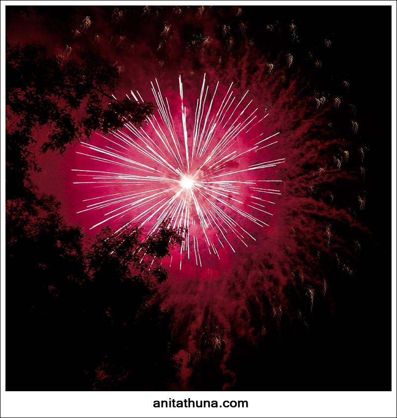 firework 2013-_D0A4813
