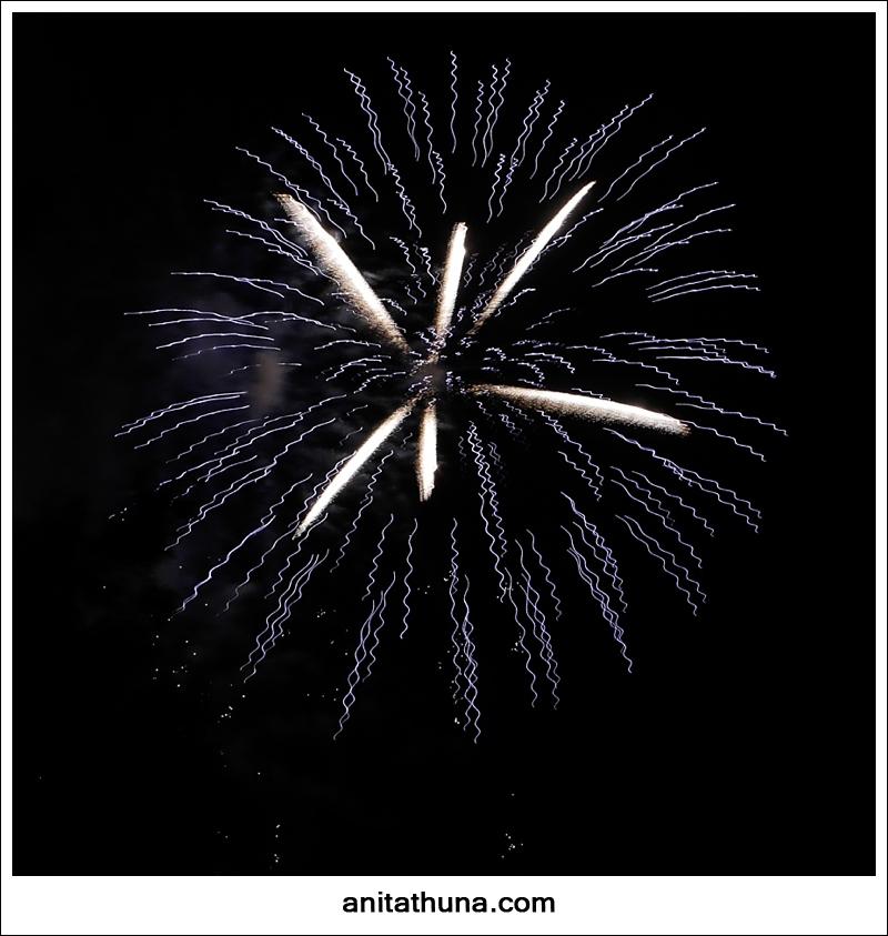 firework 2013-_D0A4818