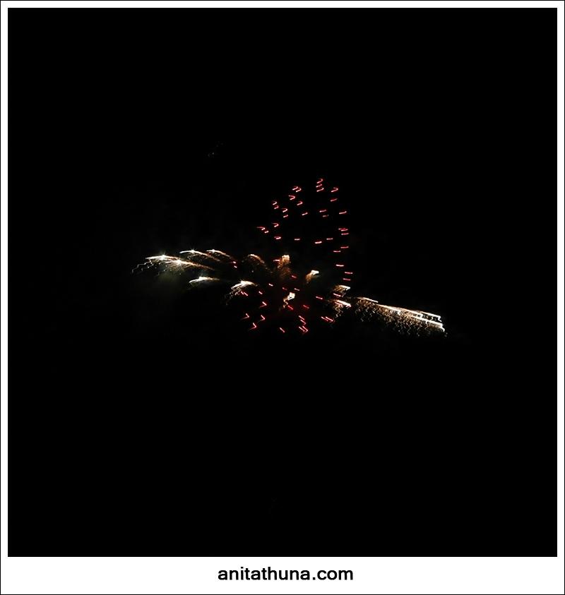 firework 2013-_D0A4819