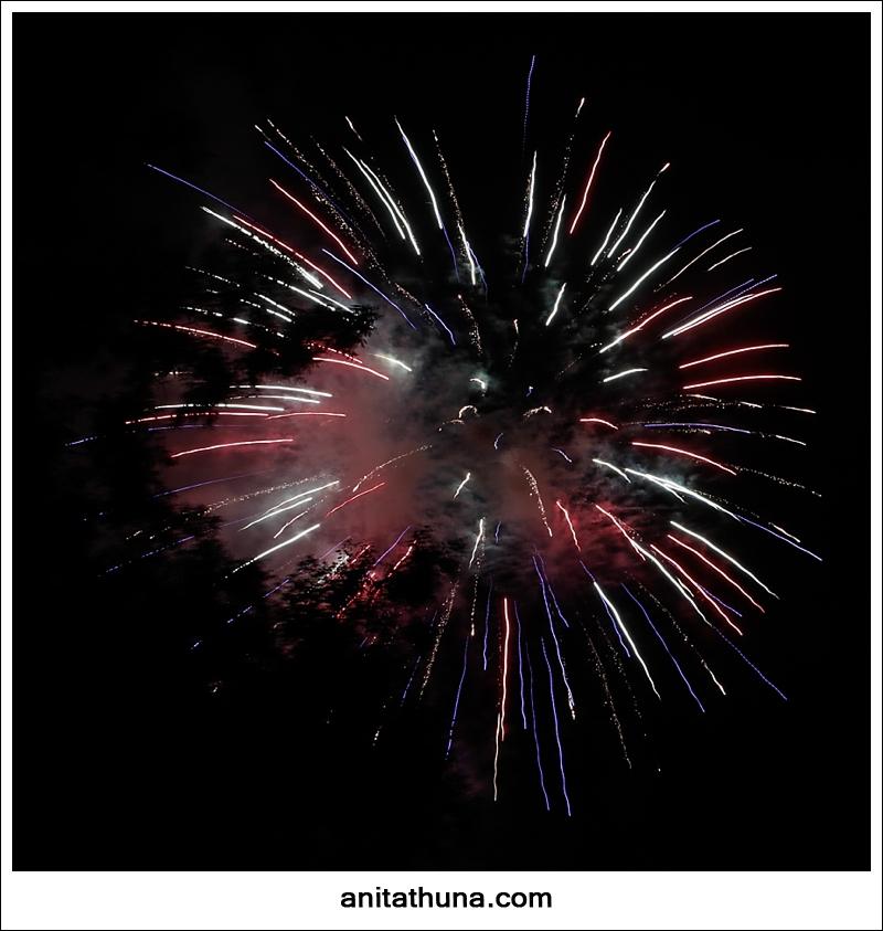 firework 2013-_D0A4821