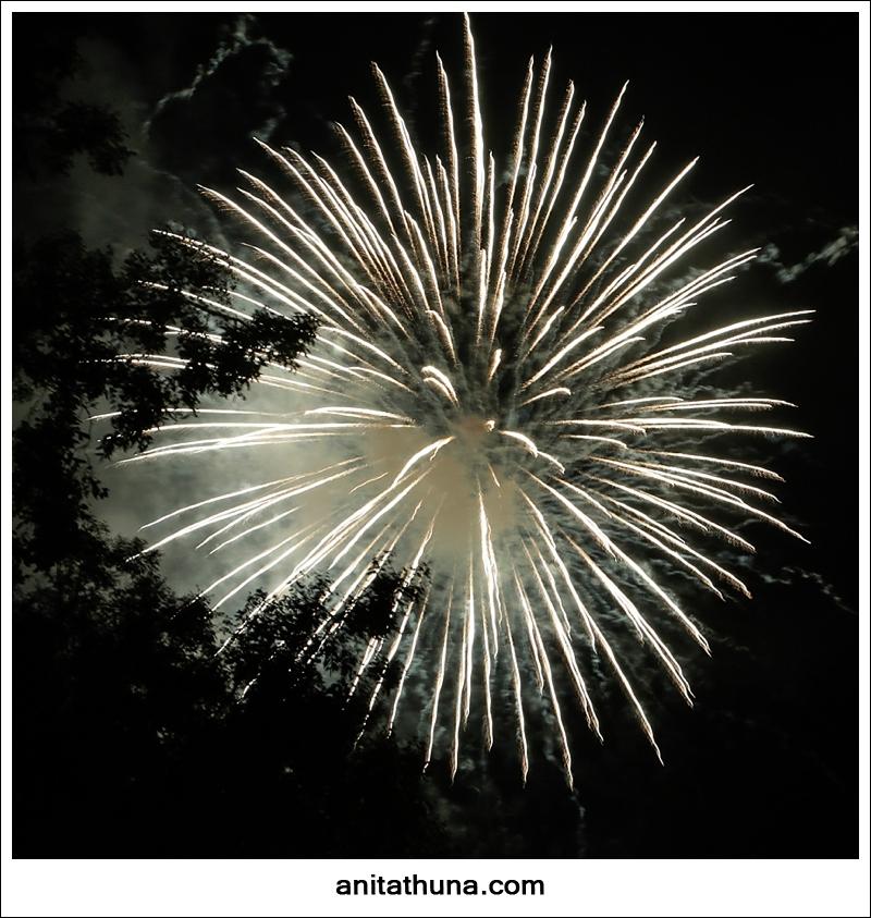 firework 2013-_D0A4823
