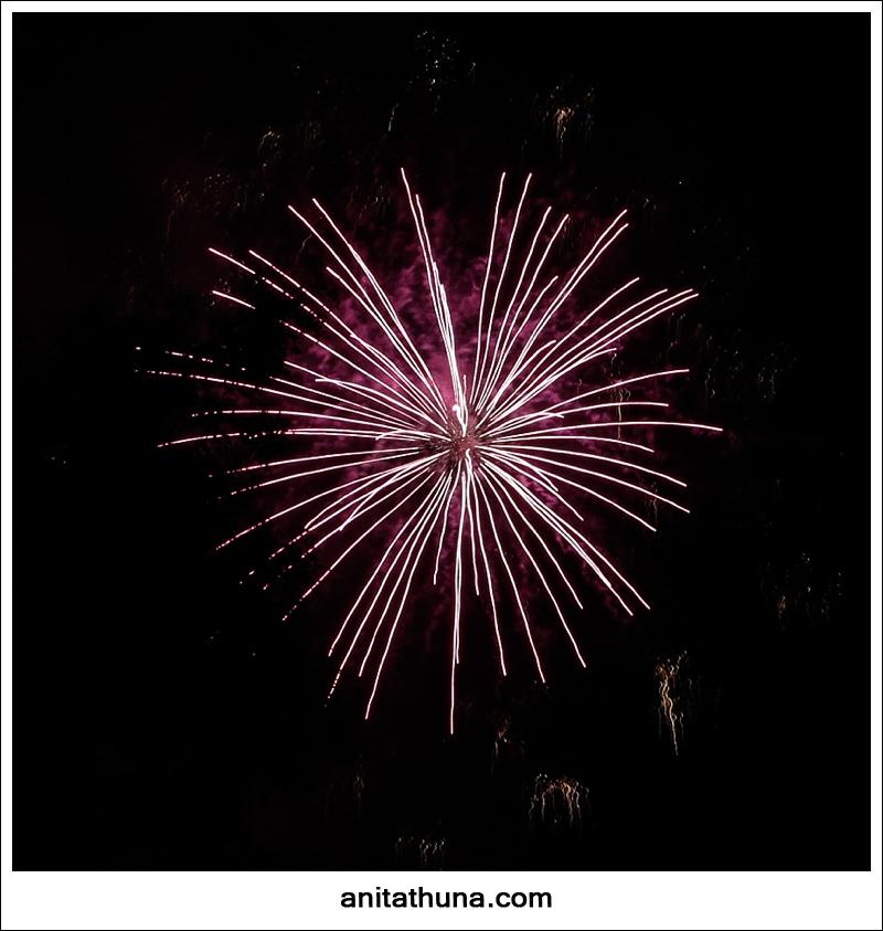 firework 2013-_D0A4833