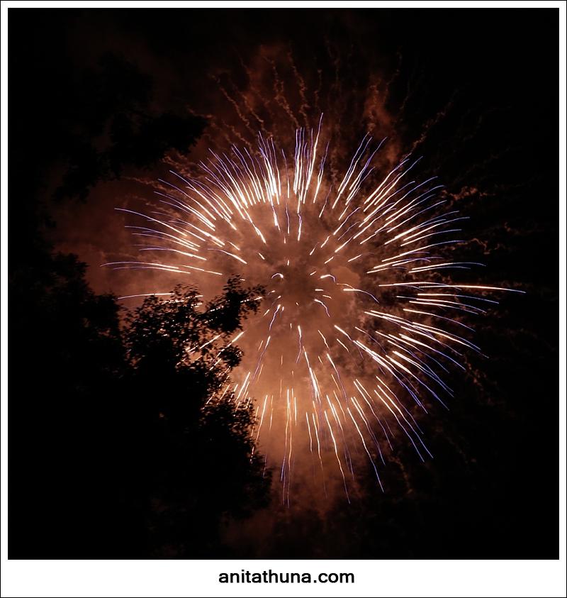 firework 2013-_D0A4840