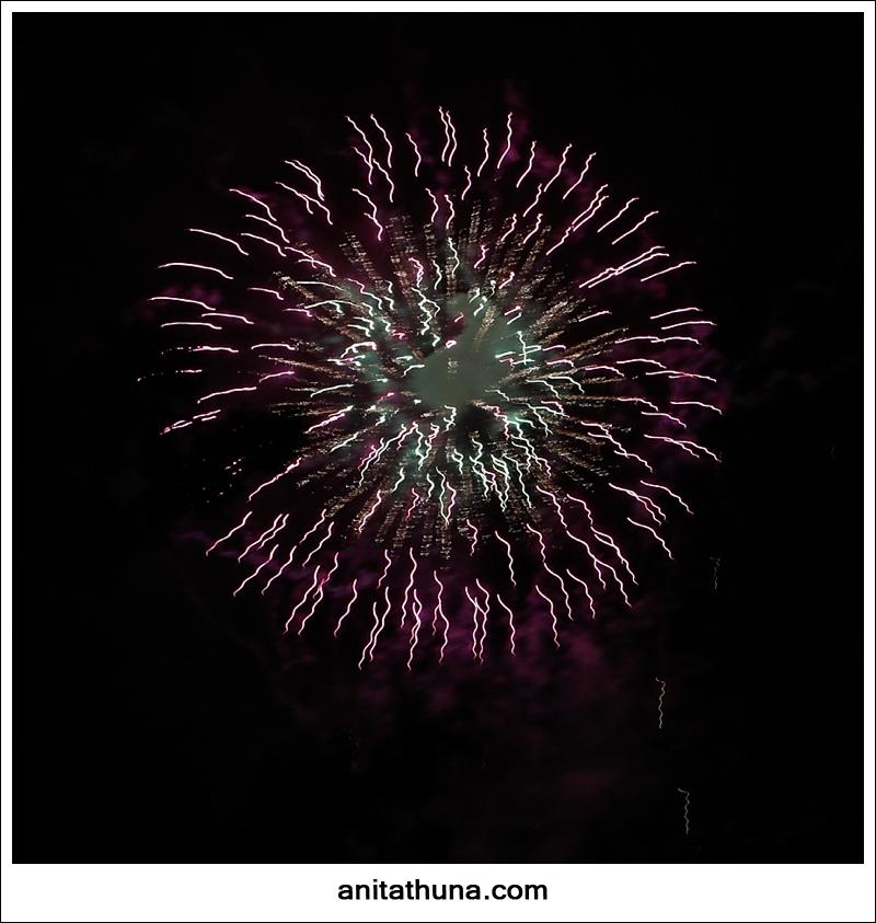 firework 2013-_D0A4859