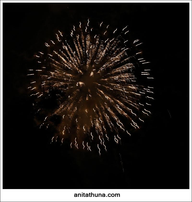 firework 2013-_D0A4860