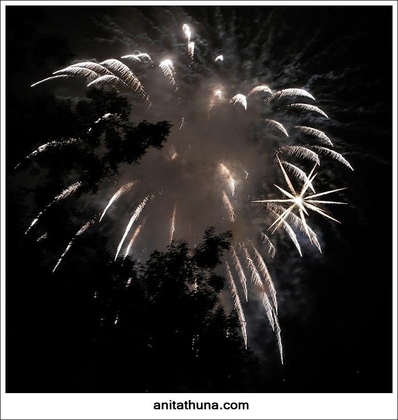 firework 2013-_D0A4865
