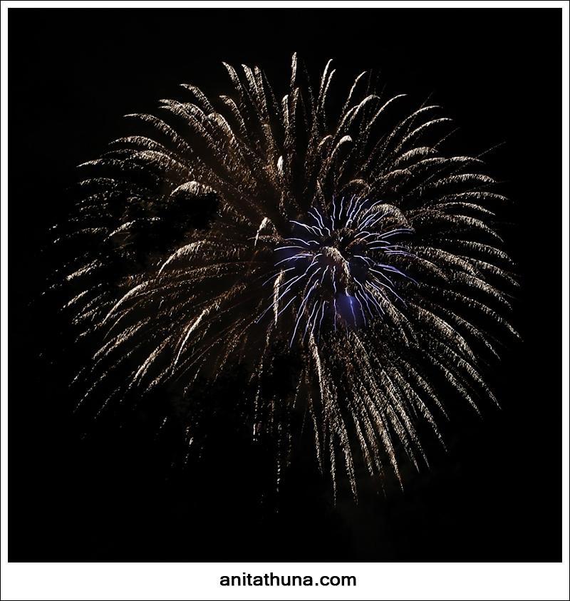 firework 2013-_D0A4869