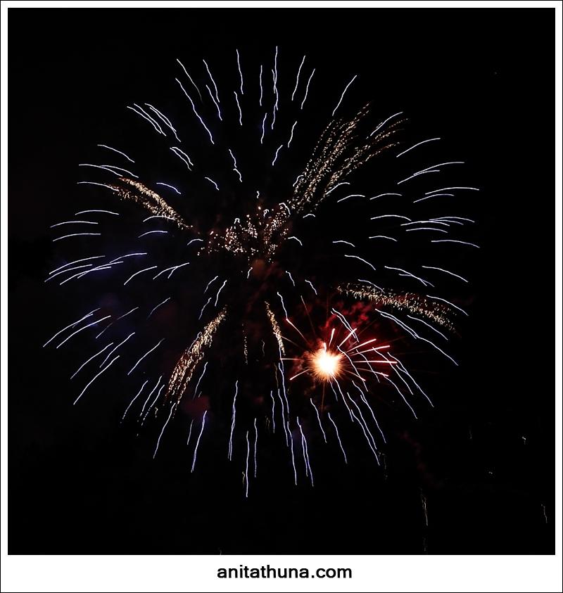 firework 2013-_D0A4871