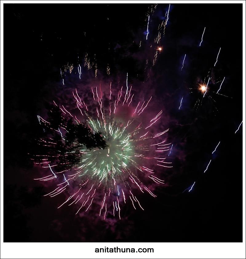 firework 2013-_D0A4876