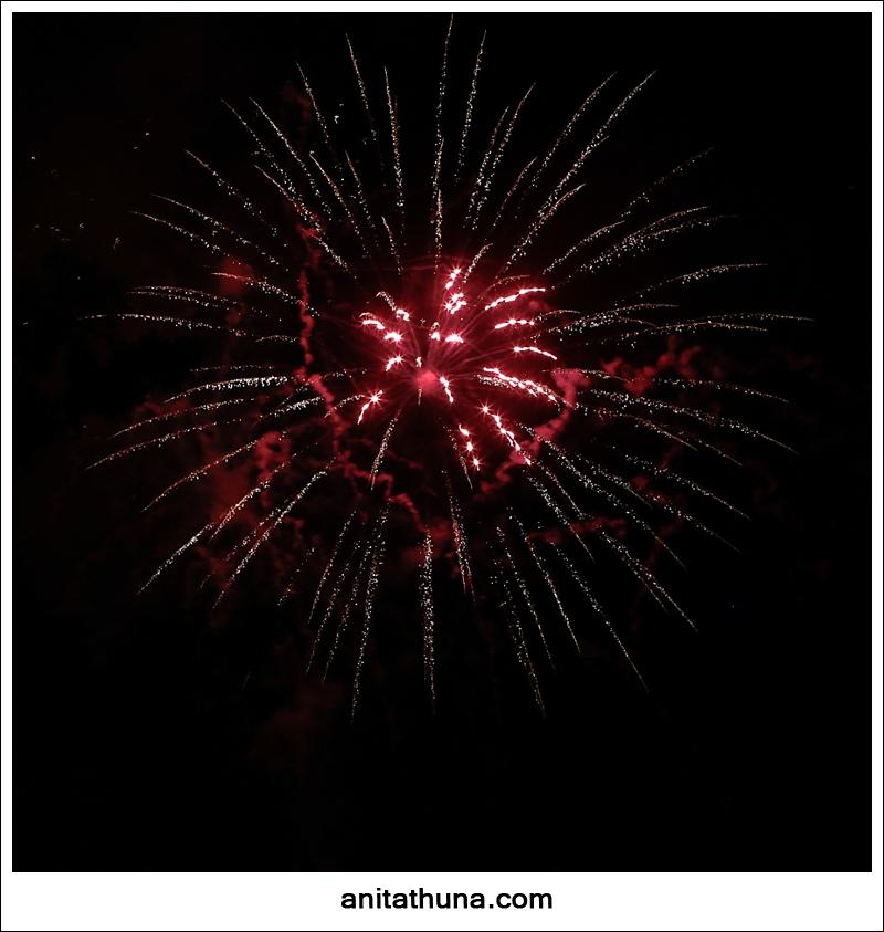 firework 2013-_D0A4886