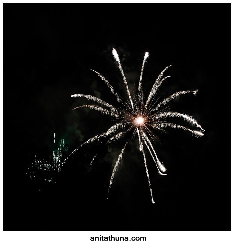 firework 2013-_D0A4887