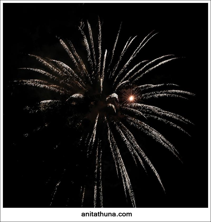 firework 2013-_D0A4895