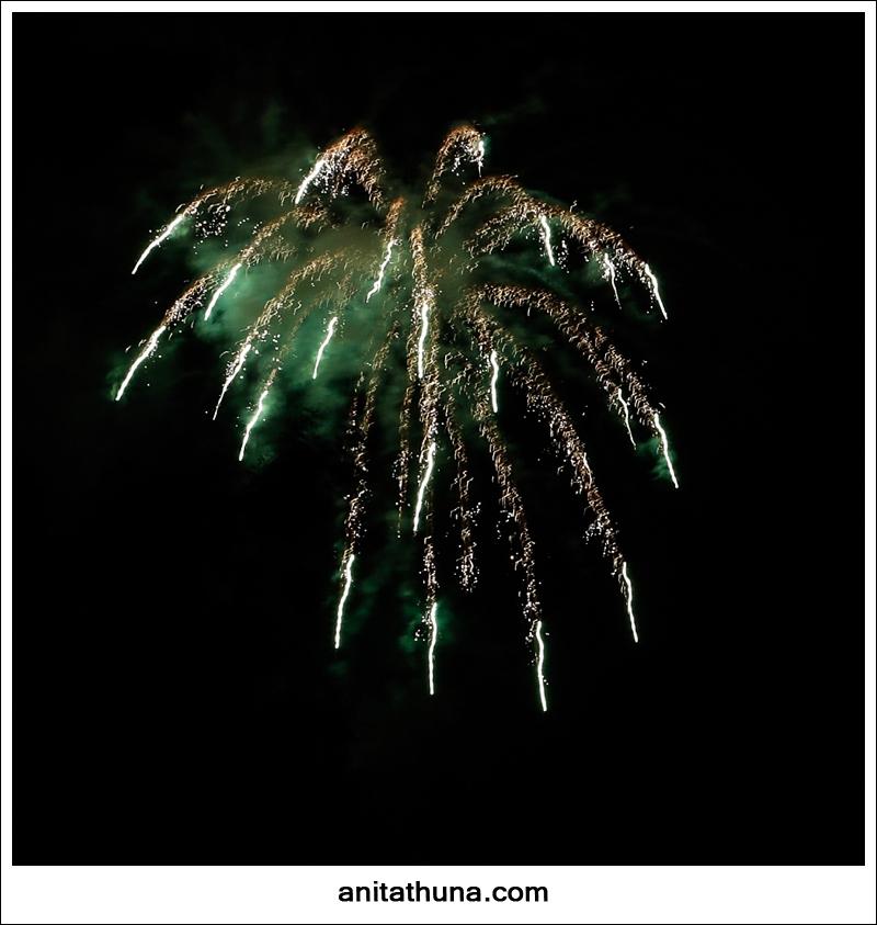 firework 2013-_D0A4904