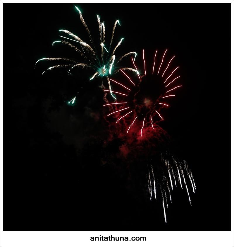 firework 2013-_D0A4907