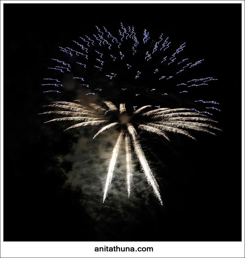 firework 2013-_D0A4909