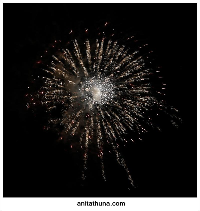 firework 2013-_D0A4910