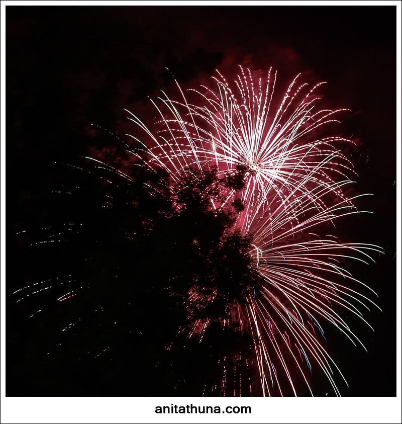 firework 2013-_D0A4916