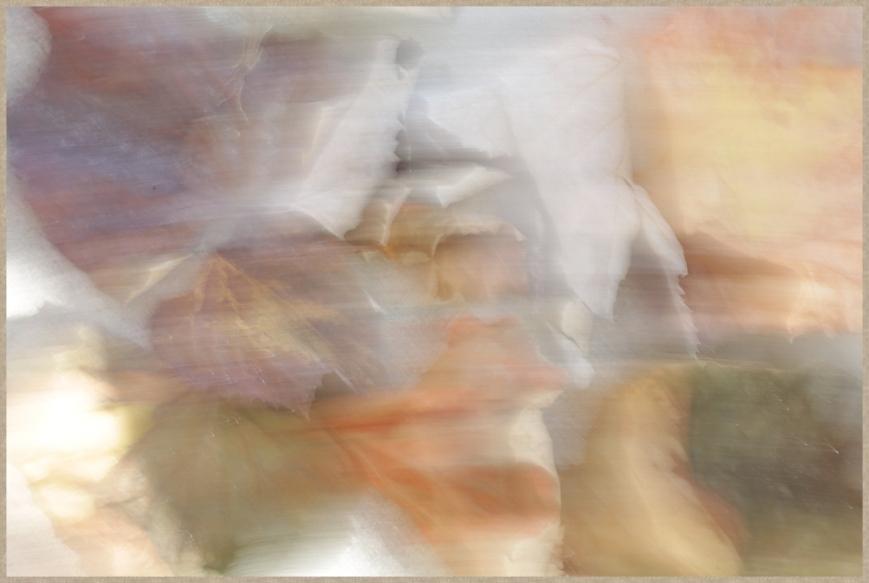 blur-_D0A0751T