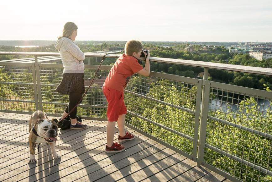 stockholm view-6