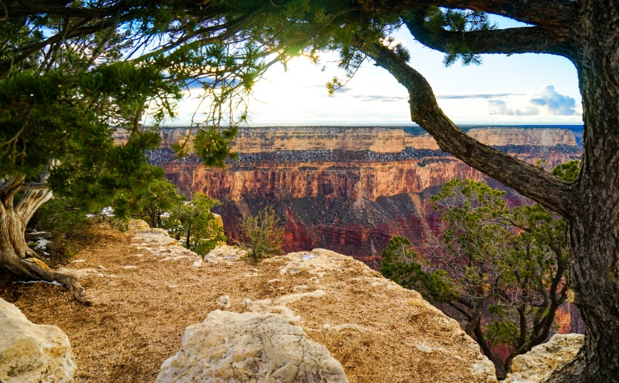 grand canyon-28