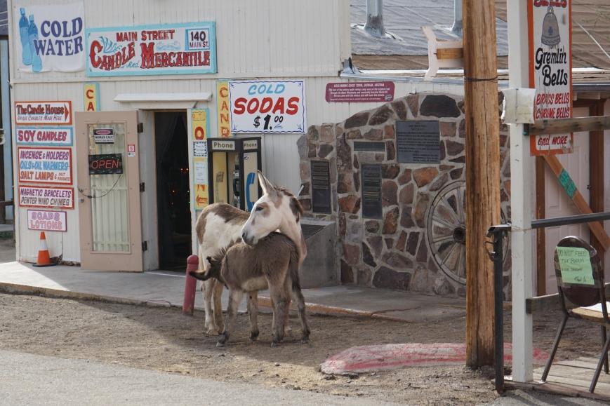 oatman town128