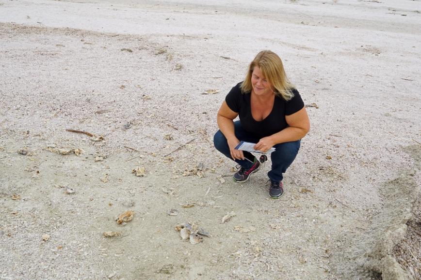 Salton Sea -20150104-28_