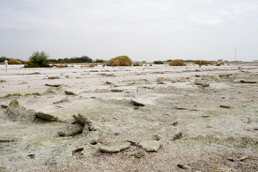 Salton Sea -20150104-36_