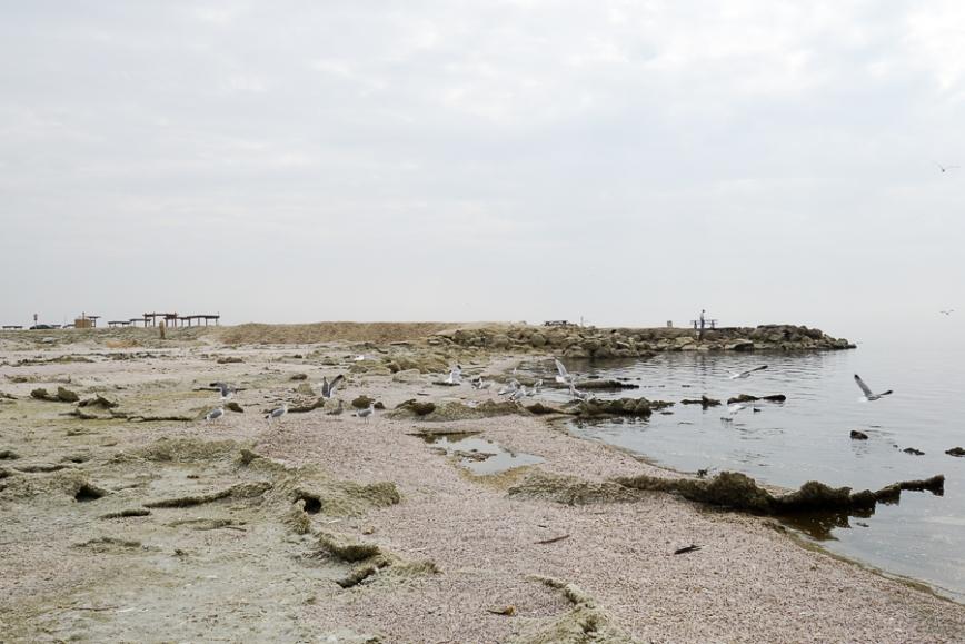 Salton Sea -20150104-38_