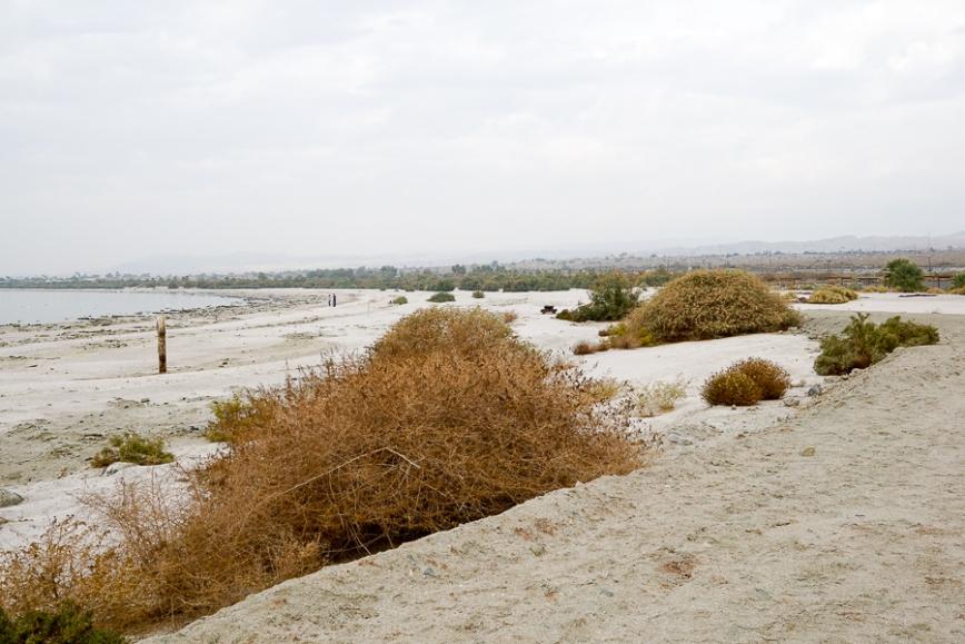 Salton Sea -20150104-45_