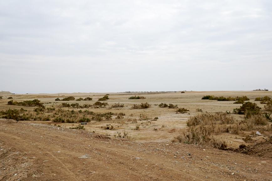 Salton Sea -20150104-55_