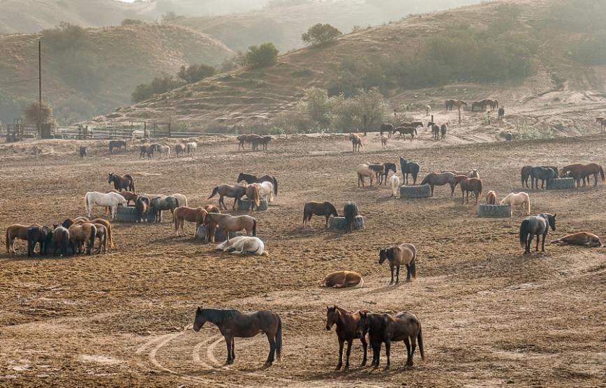 Salton Sea -20150104-6_
