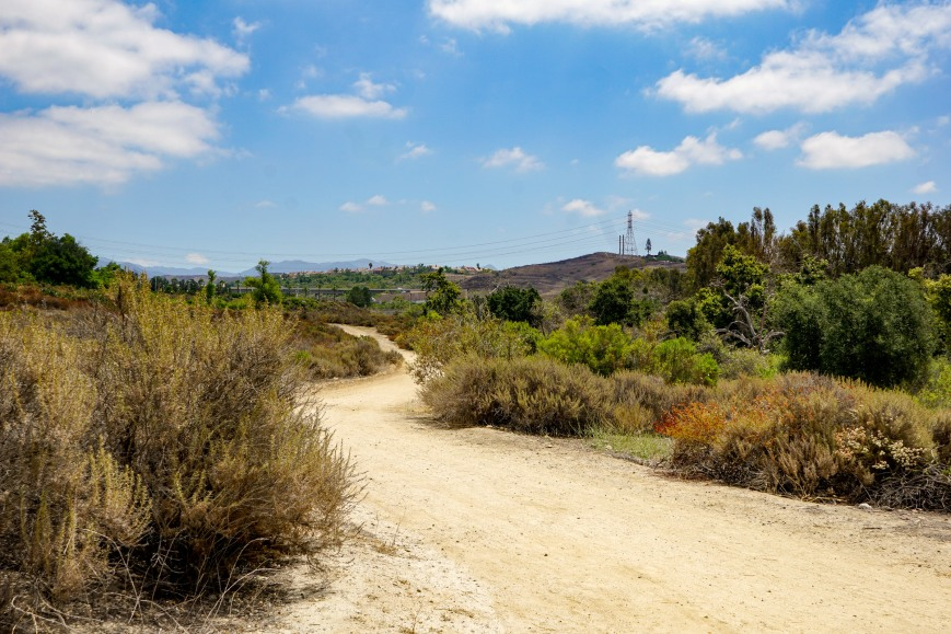 trail-04391